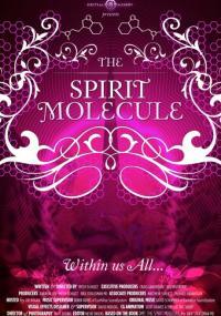 Molekuła duszy DMT