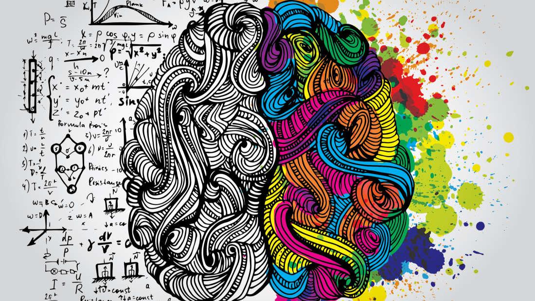 mózg mikrodozowanie dolina krzemowa
