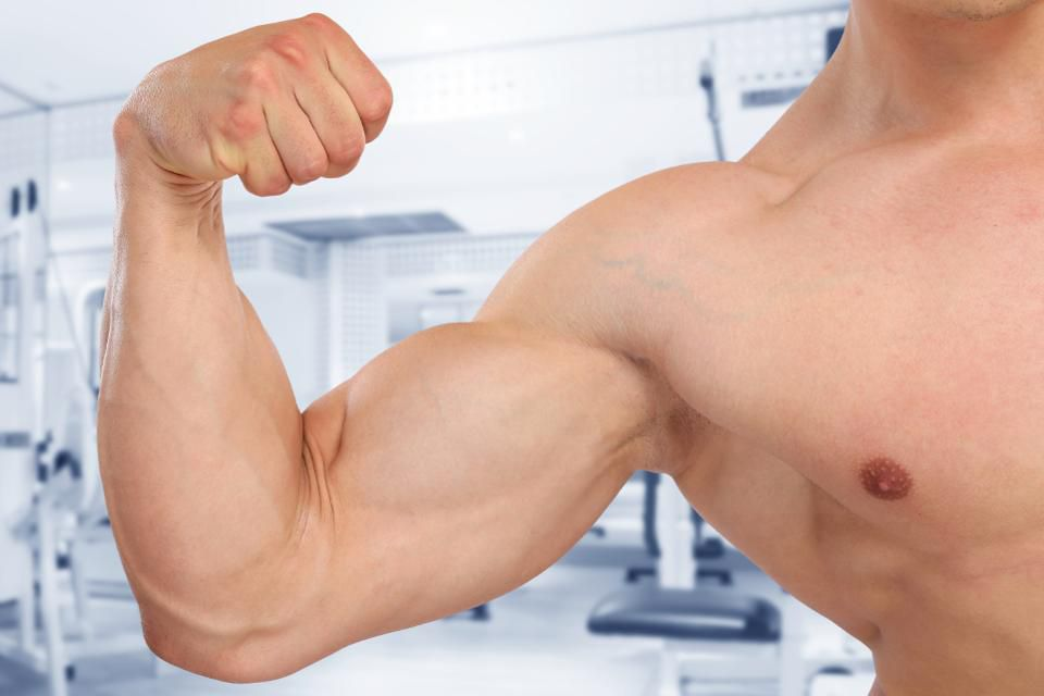 testosteron a masa mięśniowa