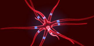 Neurone Impulse videoblocks.com