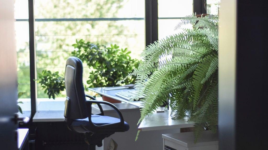 światło w biurze