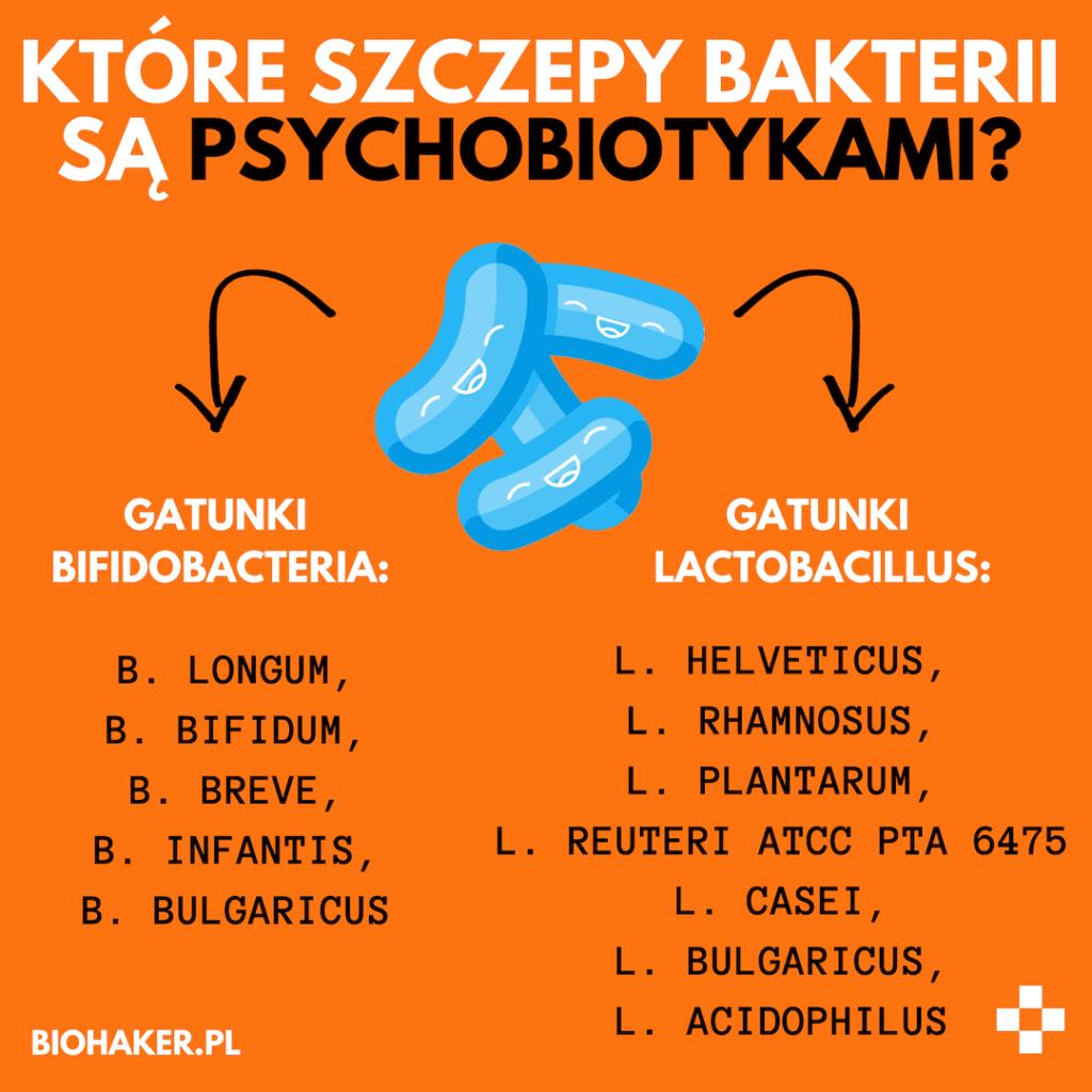 psychobiotyki biohaker szczepy bakterii flora jelitowa a depresja