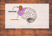 Włam się do mózgu