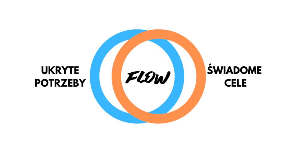 czym jest stan flow? motywacja wewnętrzna