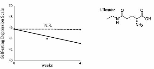 l-teanina stres
